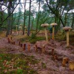 Rømø Skovlegeplads